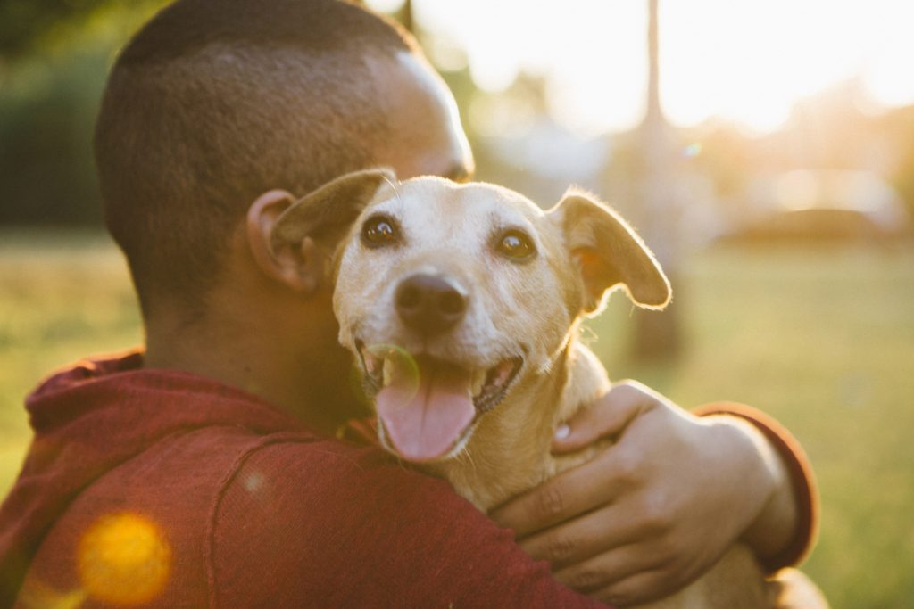 rear view of a young man hug his small dog at Pick a Pooch